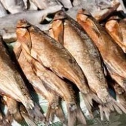 Dried Stockfish For Sale
