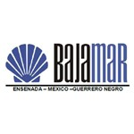 Bajamar Trading Group