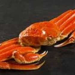 Live and frozen snow crabs