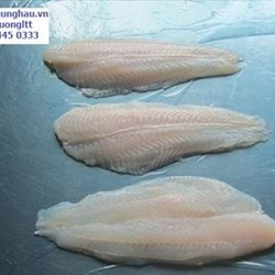 Frozen Pangasius Fillet Well-trimmed