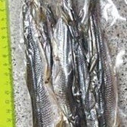 Smelts Of Dried Vacuum Packing