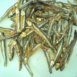 Dried Anchovy Fish