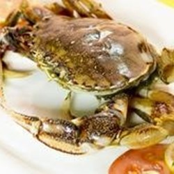 Quality Frozen Blue Swimming Crab